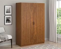 Cabinet Assembly Ameriwood Storage Cabinet Big Lots Furniture Modern And Dorel