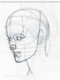 Anatomy Of Human Body Sketches Best 25 Human Body Structure Ideas On Pinterest Human Skeleton