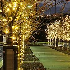 christmas lights led lights christmas tree u0026 outdoor lights