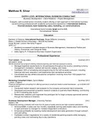 international business consultant cover letter