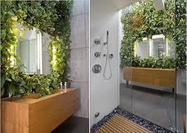 Best Plants For Bathrooms Best Plants That Suit Your Bathroom Fresh Decor Ideas