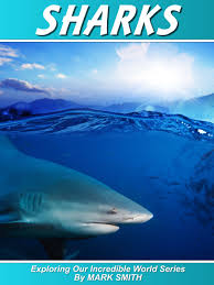 buy incredible sharks a fun shark book for kids with facts u0026amp