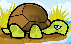 how to draw a tortoise for kids step by step by darkonator