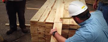 trainee pattern grader what every dimension lumber grader trainee should know spib blog
