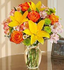 flower delivery cincinnati cincinnati flower delivery flower inspiration