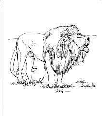 printable 17 roaring lion coloring pages 7602 roaring lion