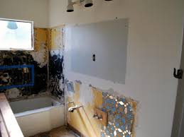 remodeling for twins hgtv