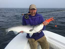 cape cod fishing charters deep sea fishing for striped bass