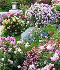 Cottage Garden Ideas Pinterest by Rose Cottage Garden Ideas Shabby Chic Garden Ideas Pinterest