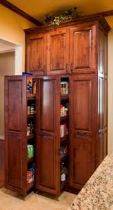 pull out cabinets kitchen pantry pull out pantry cabinet kitchen contemporary with anigre cabinets