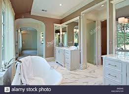 master bath in new construction home with standalone tub stock