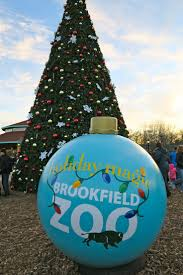 best 25 brookfield zoo ideas only on pinterest
