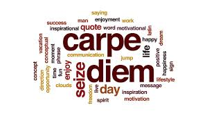 carpe diem word cloud text design animation stock