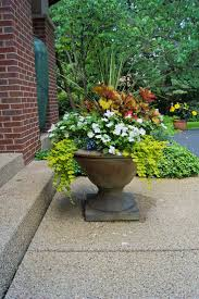 Lucca Steel Leaf Gazebo Cover by 9 Best Planters Images On Pinterest Cast Stone Stone Planters
