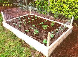 ideas for a vegetable garden garden design ideas
