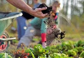 how to prepare garden soil for planting planet natural