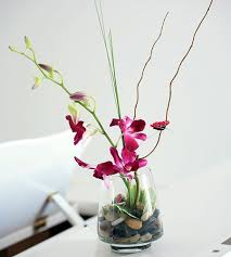 orchid arrangements asian simplicity orchid arrangement in minneapolis mn schaaf floral