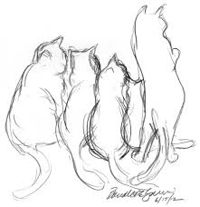 picture of a cat to sketch best 25 cat sketch ideas on pinterest