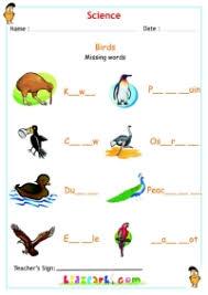 animals worksheet for kids science activity sheet
