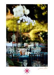 Potted Plants Wedding Centerpieces by 25 Best Bouquet Images On Pinterest Orchid Plants Centerpiece
