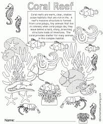 coral reef animal printouts cover page enchantedlearning