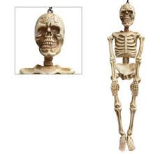 poseable skeleton size poseable skeleton 2ft x 5ft party city