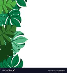 tropical leaves palm tree border decoration vector image