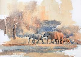 elephant geoff hunter wildlife art