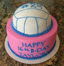 24 best bday cake ideas images on pinterest volleyball cakes