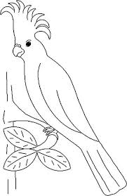 parrots coloring pages imperial parrot coloring page download u0026 print online coloring