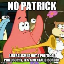 Patrick Star Meme - a funny patrick star meme on liberalism by duckytheduck096 on