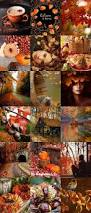 fall pumpkins background pictures best 20 autumn pictures ideas on pinterest autumn leaves fall