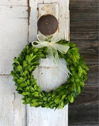 artificial boxwood wreath crushing on preserved boxwood view along the way