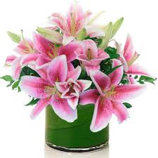 pink lilies send pink lilies flowers gold coast botanique