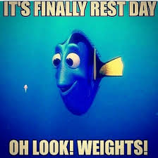 Gym Rest Day Meme - ha how many times i swear it will be a light easy rest day and