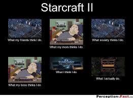 Starcraft 2 Meme - starcraft ii what people think i do what i really do
