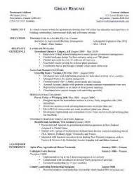resume branding statement examples sample resume branding