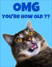 Cat Birthday Cards I Need Votes For This Come Vote For Me Here Http Catchmyparty