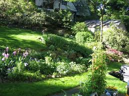 Landscaping Ideas For Slopes Landscaping Ideas For Hillside Backyard Landscaping Ideas For