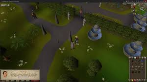 i u0027ve been playing since day 1 of osrs and i just completed my