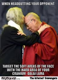 Advice Meme - funny dalai lama headbutt advice meme pmslweb