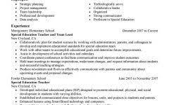 Team Leader Resume Format Bpo Team Leader Resume Format Project Management Resume Samples For A