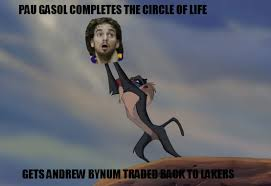 The Lion King Meme - pau gasol was watching lion king play and false trade report