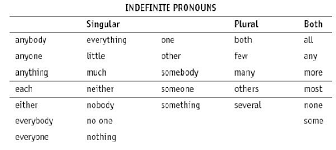 indefinite pronouns worksheets mreichert kids worksheets