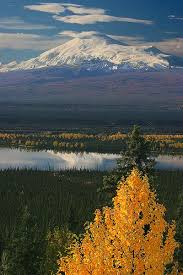Alaska how to travel for free images 73 best autumn in alaska images alaska travel jpg