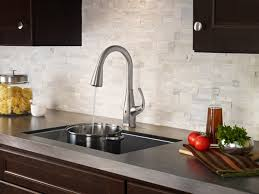 sink u0026 faucet amazing pfister kitchen faucet amazing price