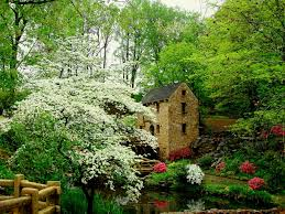 beautiful garden movie pin by kristen canler on scenery and other things i like