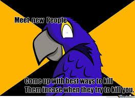 insane paranoid parrot by phasmaridley meme center