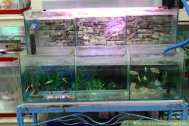 how to start an aquarium shop 8 steps with pictures wikihow