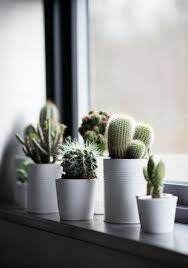 creative window sill decoration ideas inspirations wowfyy